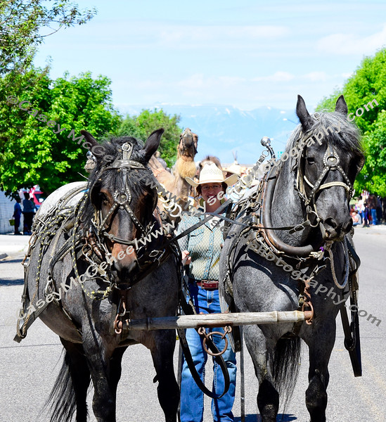Clark County - June 15 Rodeo