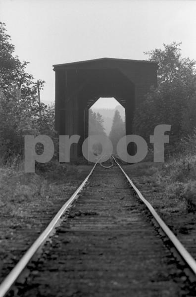 Covered railroad bridge in Doty, WA. Photo taken in 1972.