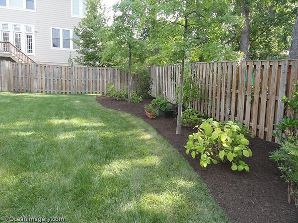 20110721 Arlington, VA - Landscaping Project