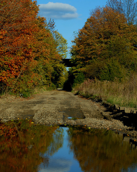 country road reflection.jpg