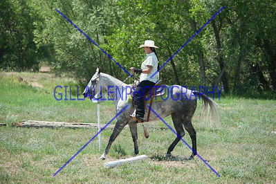 Colorado Stock Horse Assoc. July 15th 2012