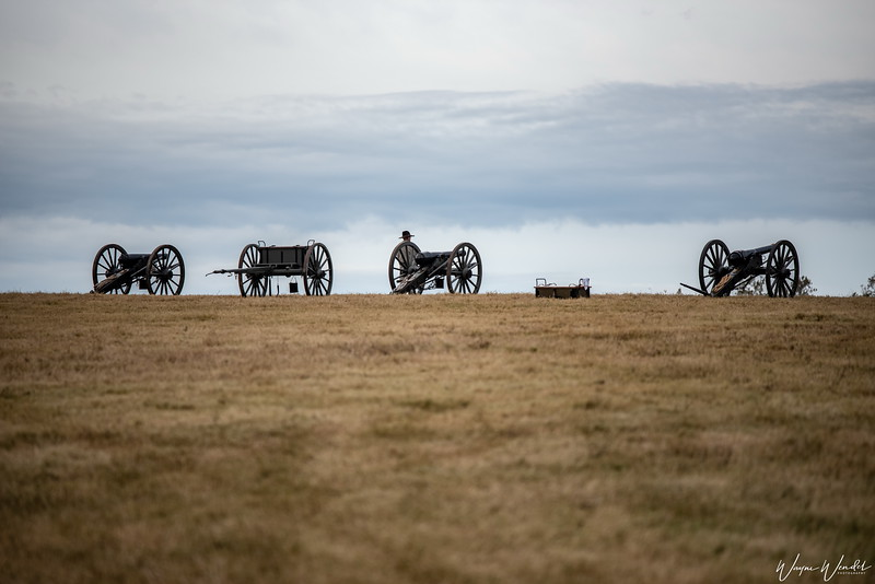 20181117_Liendo_Plantation_Civil_War_Weekend_Cannons_Hillside_750_9265.jpg