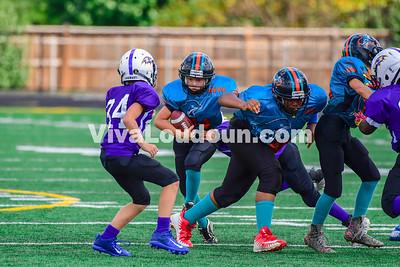 Youth Football: AYFL B-Dolphins vs. LLBFL B-Ravens 09.16.2017 (by Al Shipman)
