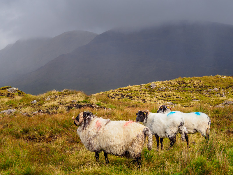 Ominous weather between  Killary Harbour and the Inagh Valley