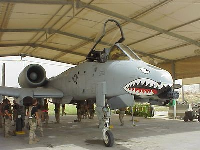 One tough Warthog