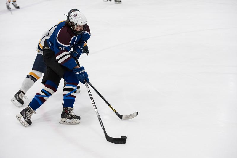 Wildcats Hockey 1-14-17_0300.jpg