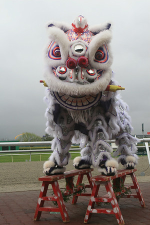 Golden Gate Fields, Chinese New Years