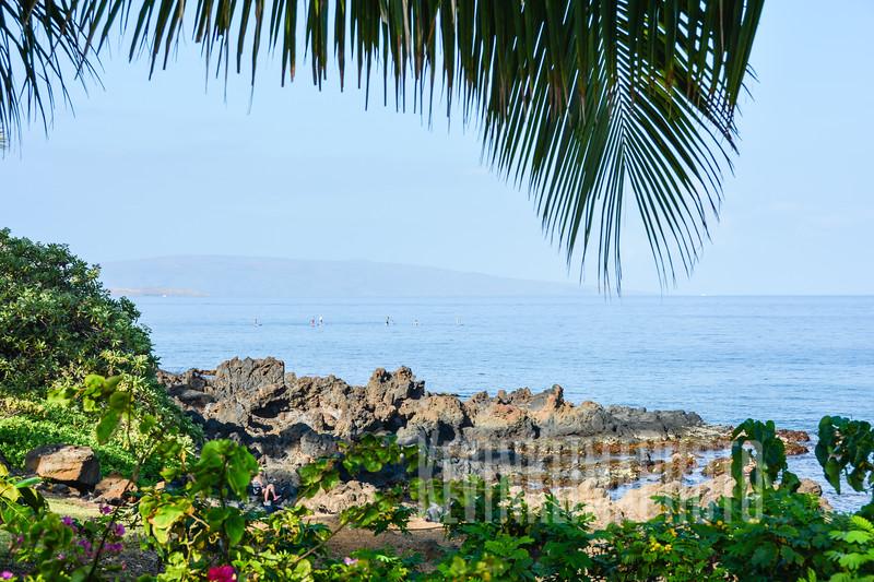 Maui20.jpg
