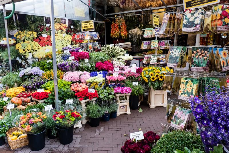 Lots Of Flowers