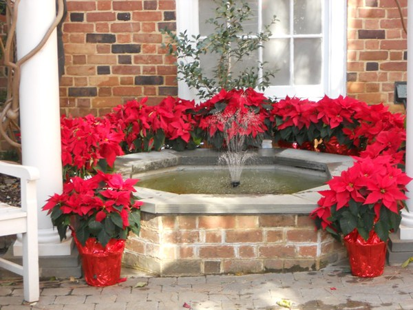 christmasfountain.jpg