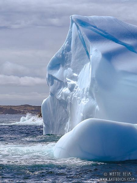 Iceberg 56   Photography by Wayne Heim