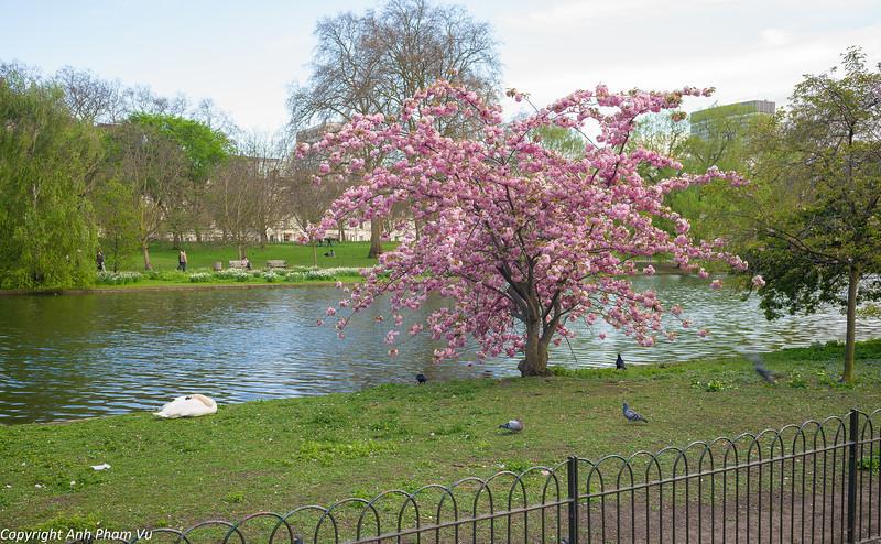 London April 2013 098.jpg