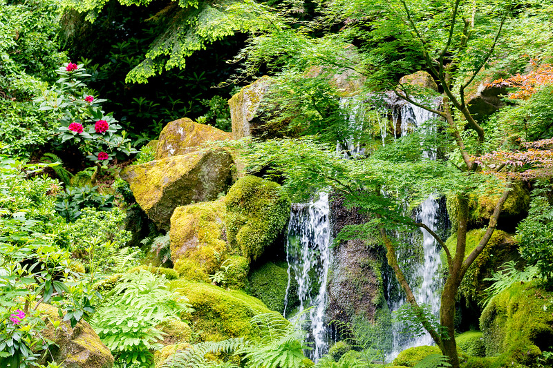 Portion of the waterfall with flowers