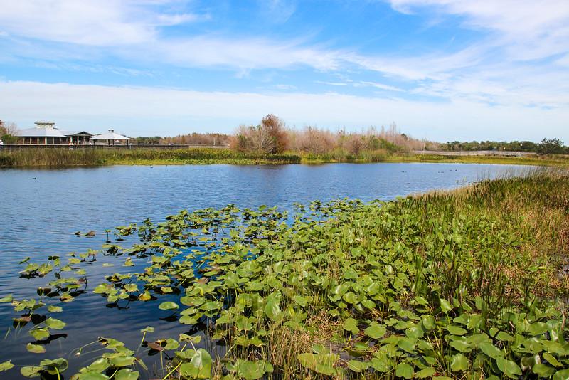 2016-02-10   Green Cay Wetlands   Delray Beach   Florida