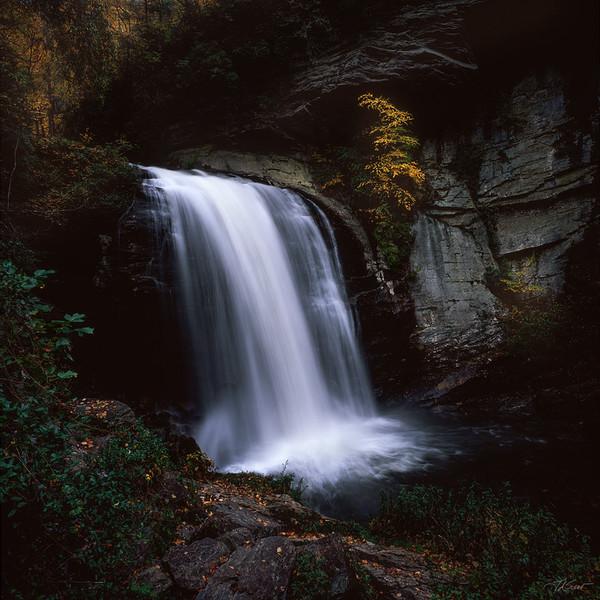 Looking Glass Falls #2, North Carolina