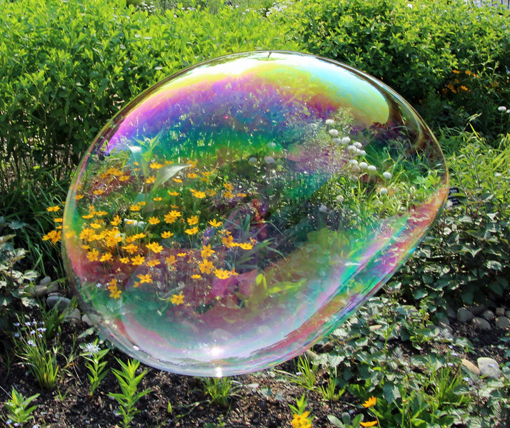 Bubble with flowers