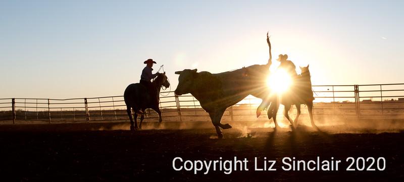 C/O Rodeo Practice