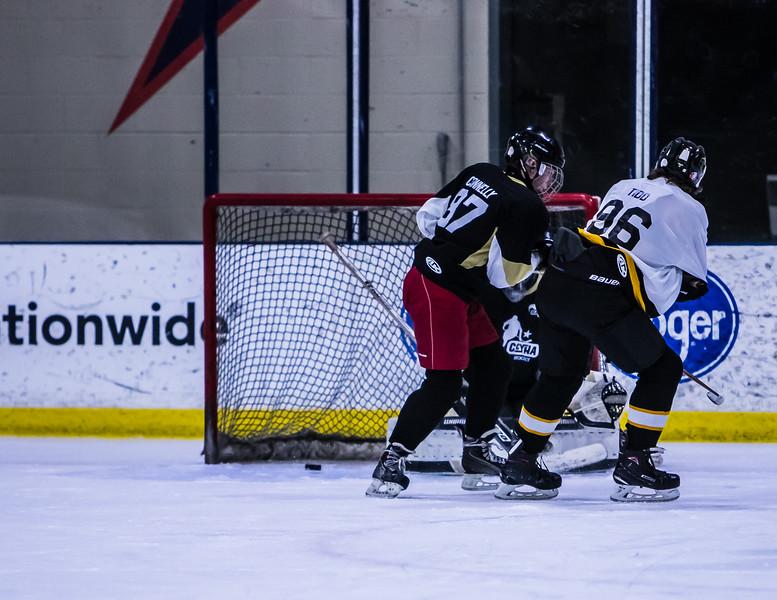 Bruins-109.jpg