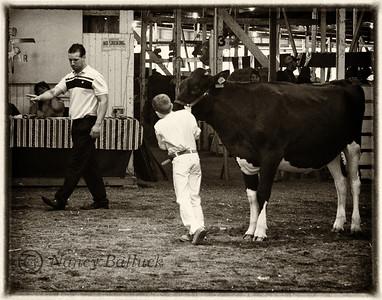 Lensbaby Cuyahoga County Fair Aug. 8, 2012