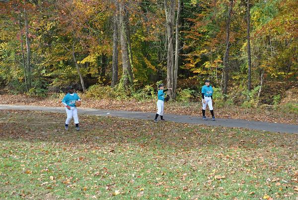 Fall 2010 Baseball