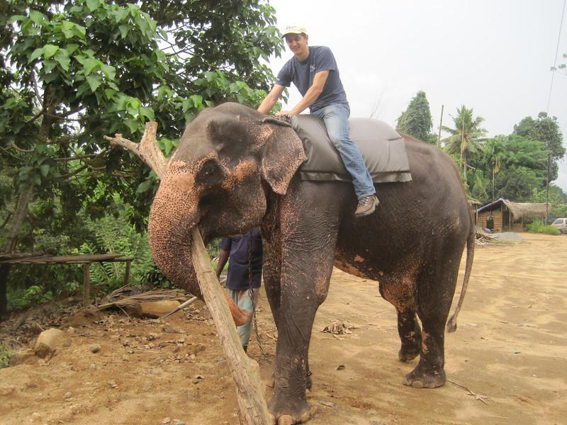 Ryan Iafigliola goes for an elephant ride.