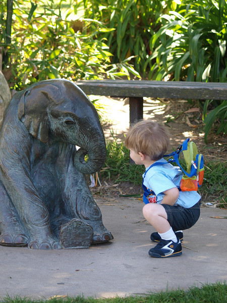 Took the family, and the E-420 to the Santa Barbara Zoo