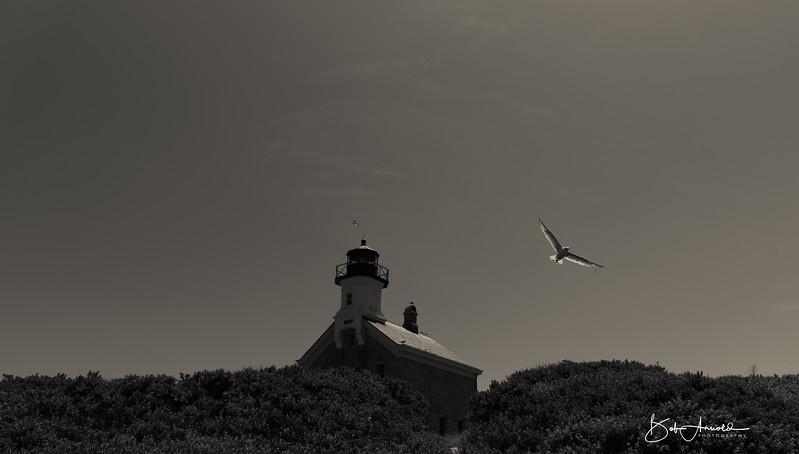Block Island-31.jpg