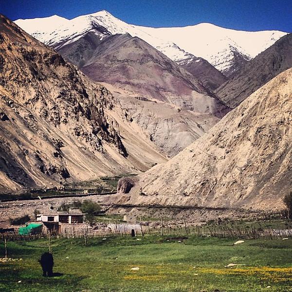 Mountains and meadows. Himalayan landscape color wheel. Village of Hangkar, Markha Valley #Ladakh