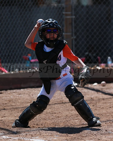 Tigers 8U Game Shots