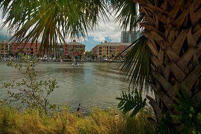 Tampa's River Walk