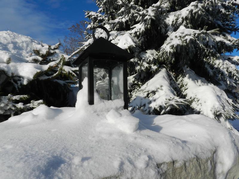 fantastic snow-7155.jpg