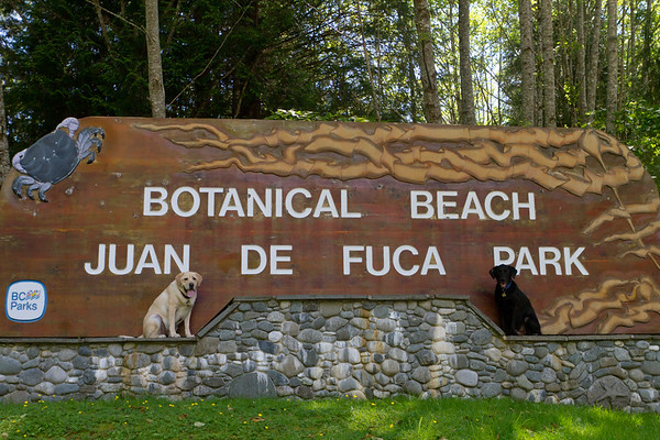 Botanical Beach