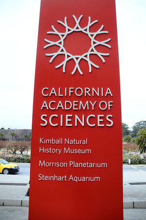 Cal Academy of Sciences