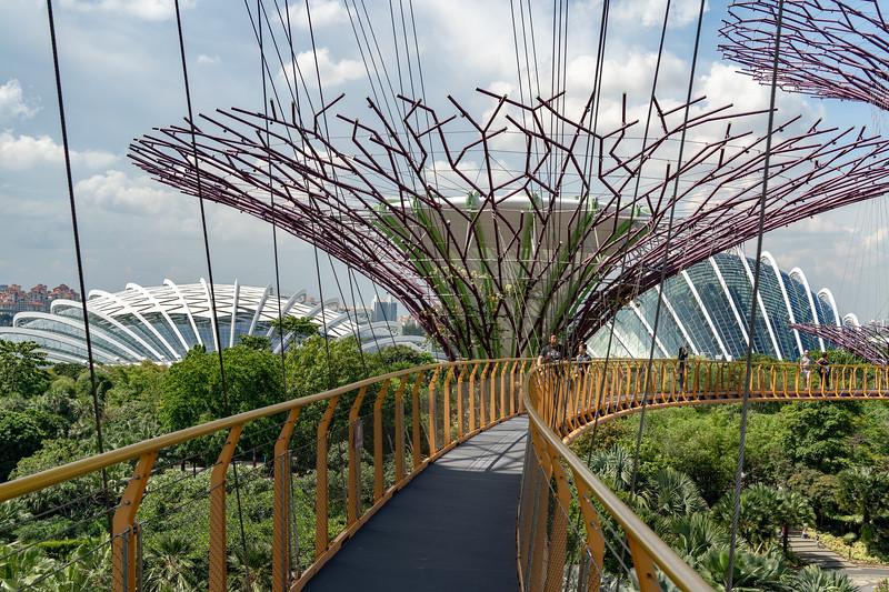Singapore-19-066.jpg