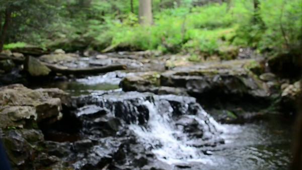 Ricketts Glen State Park