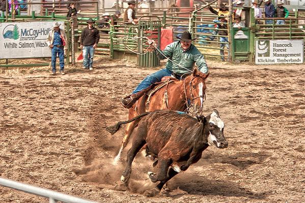 2011 Ketchum Kalf Rodeo