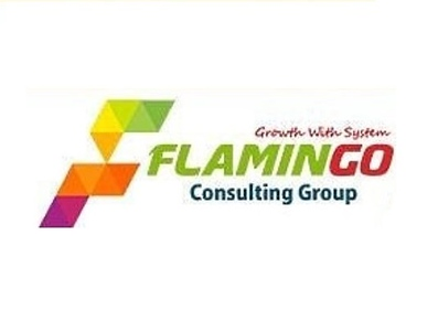 Flamingo Consulting Group