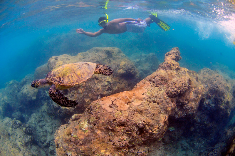 Hawaii - Hanauma Bay-32.JPG