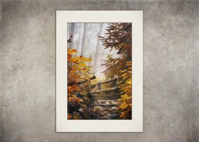 Misty Footbridge - $5