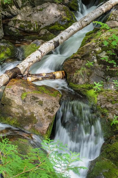 Fallen Birch Falls