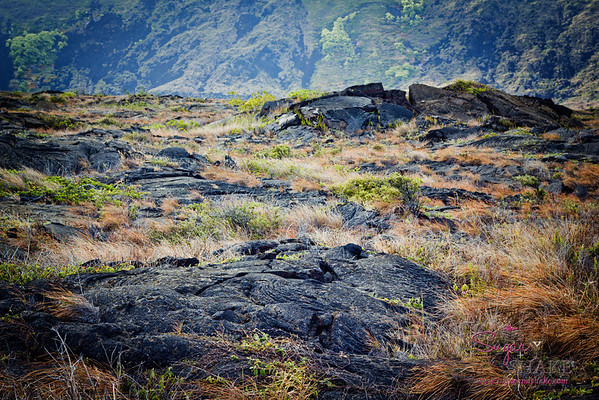 Lava landscape at Hawai'i Volcanoes National Park. © 2012 Sugar + Shake