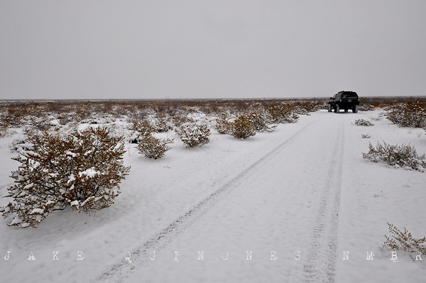 Winter in Southern NM 11
