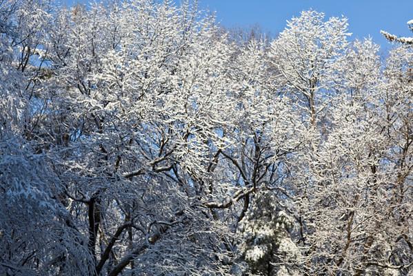 09-12-06 First Snow