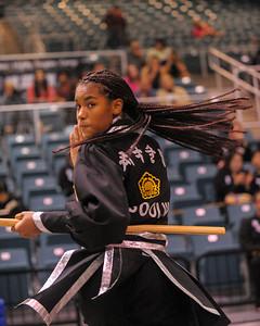1st & 2nd Dahn (Black Belts) at the WKSA 2015 National Tournament, Katy, TX, 2015-10-10