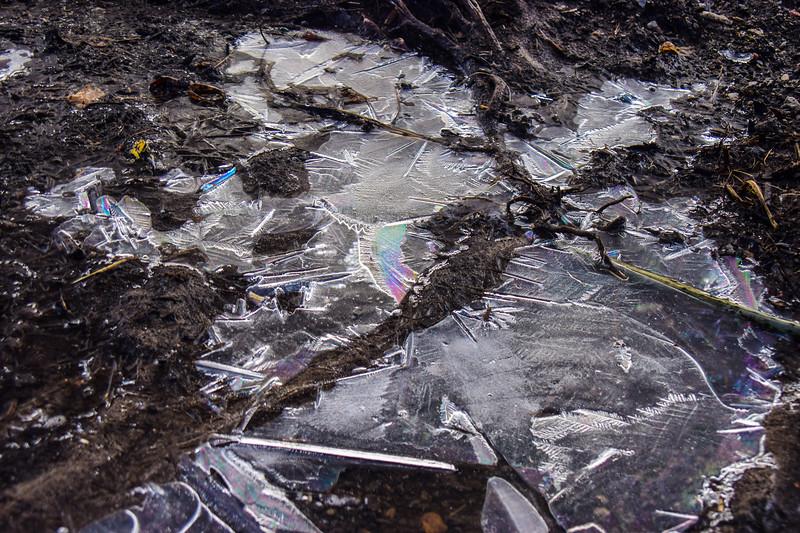 DSC_9932  AR ice rainbow JP tNEF ps-.jpg