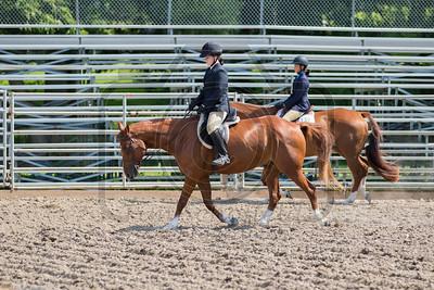 Attica Horse Show 8-28-16