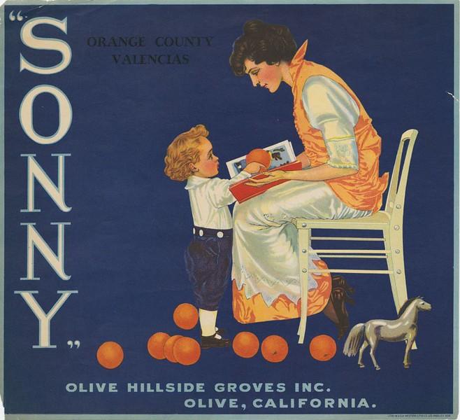 Olive-SonnyOrangeCountyValencias-OliveHillsideGrovesInc.jpg