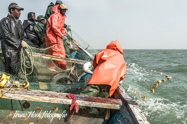 Pirogue fishing
