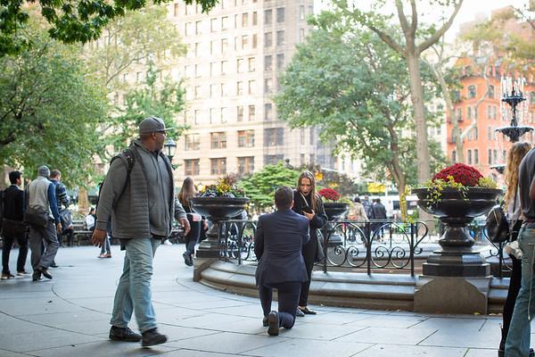 Jakes Madison Square Park Proposal