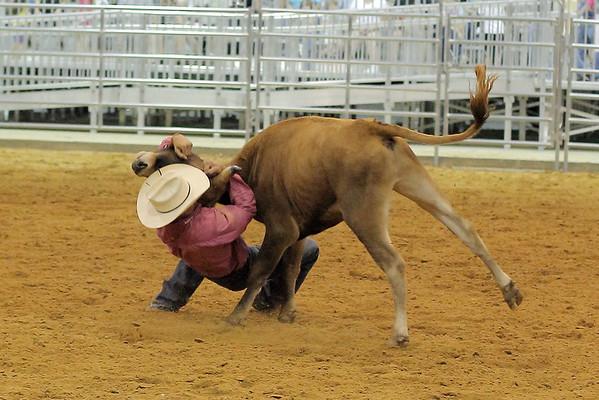 BGR-6-4-2011-Steer-Wrestling